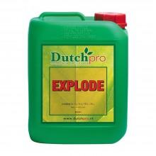 Dutch Pro Explode 5L, stymulator kwitnienia
