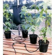 System nawadniający Big Drippa 6 roślin