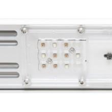 Lampa LED SANLight S4W 140W, wzrost i kwitnienie