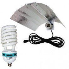 Zestaw oświetleniowy CFL 55W na wzrost