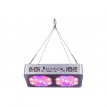 Lucky Grow LED Modular220, na kwitnienie