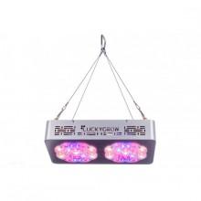 Lucky Grow LED Modular220, na kwitnienie
