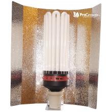 Zestaw oświetleniowy CFL ProStar 250W Bloom