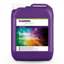 Plagron Green Sensation 5L, stymulator kwitnienia 4w1