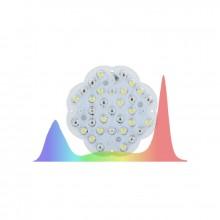 Lucky Grow LED, źródło światła do klonów, soczewka 120°