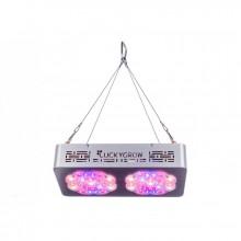 Lucky Grow LED Modular220, na kwitnienie, soczewka 120°