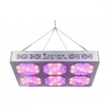 Lucky Grow LED Modular660, uniwersalne, soczewka 120°