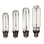 HPS & MH Bulbs