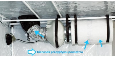 How to set up ventilation in growbox?