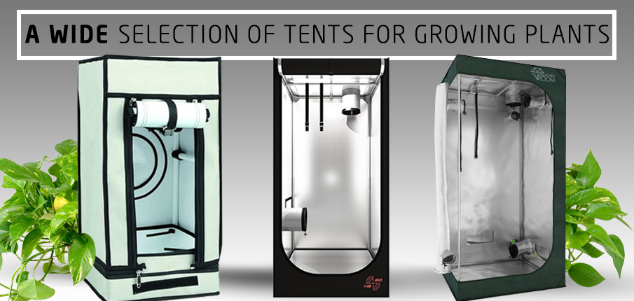 A wide selection of tents for growing plants